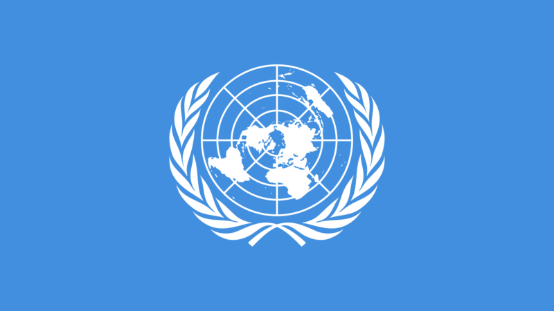 United Nations Call for Social Justice in the Digital Economy