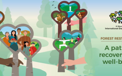 International Day of Forests 2021