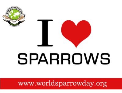 The theme for World Sparrow Day is I LOVE Sparrows