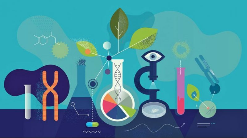 Role of women in leading scientific research increasing